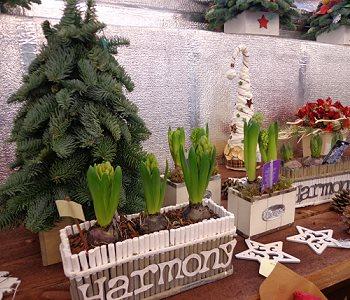 Как украсить свой дом к Новому году