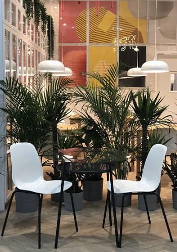 ИКЕА кафе в Санкт-Петербурге