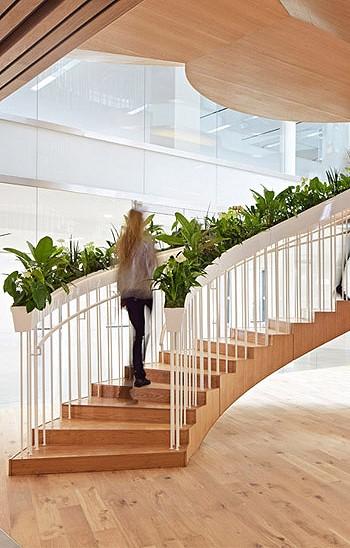 Лестница в офисе