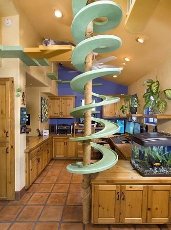 Дом, в котором любят кошек