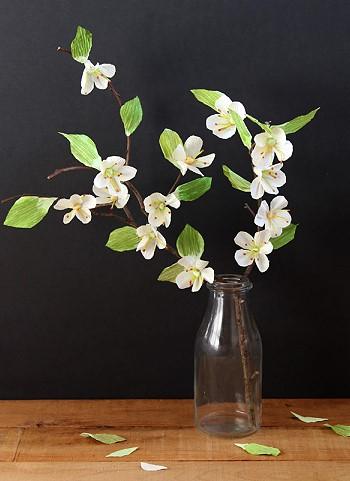 Ветка цветущей вишни в бутылке