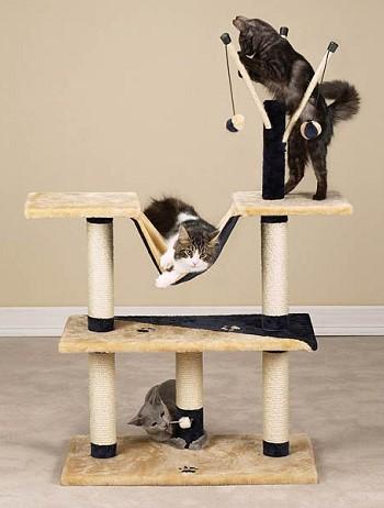 Тренажерный зал для кошек