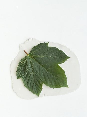 Кладем листок на глину