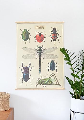 Постер с насекомыми в декоре интерьера