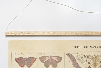 Рейка для постера с бабочками