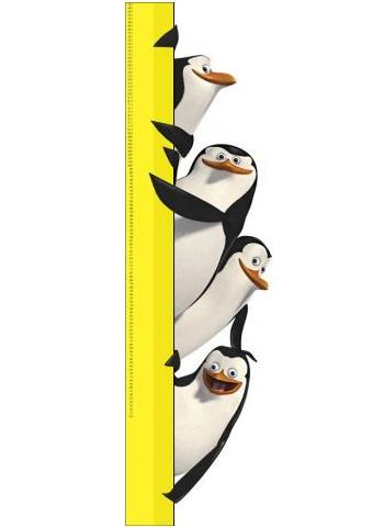 Ростомер Пингвины